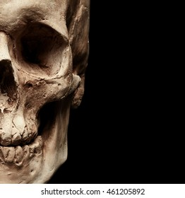 Male skull isolated on black background
