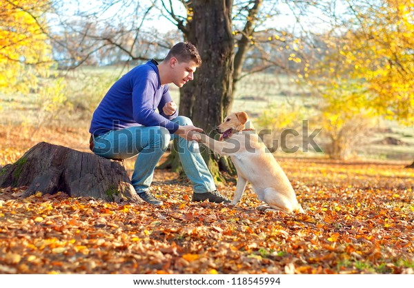 male training a golden retriever on a late autumn, sunny day