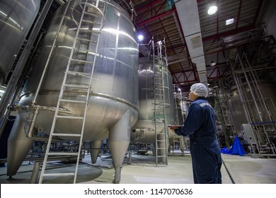Male work inspection record process boiler milk heat  cellar at the with vertical factory stainless steel tanks