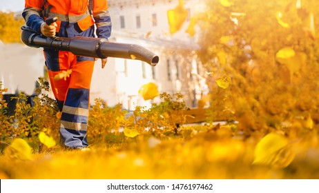 Male worker removes leaf blower lawn of garden Autumn.