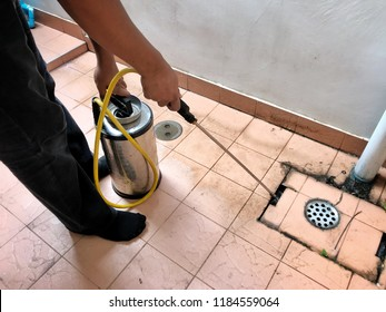 Male Worker Spraying Pesticide On floor. Dispose Termite infested wood inside house.