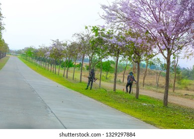Male workers are cutting the grass along the concrete road. That is the way through the park To create beauty.