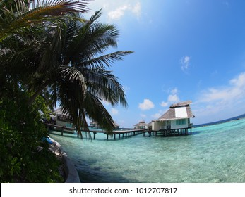 maledives beach holiday