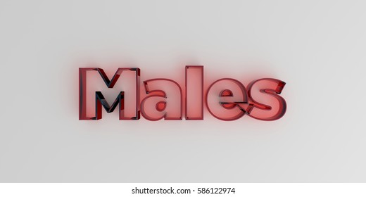 Males - Red glass text on white background - 3D rendered