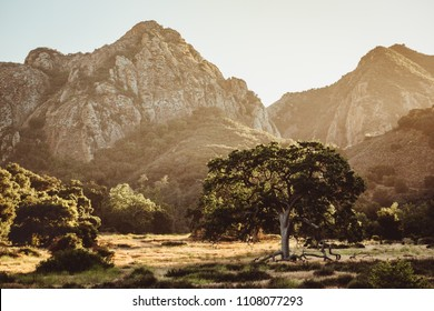 Malibu Creek Park in California is hidden in the Santa Monica Mountains just north of Los Angeles by Pacific Coast Highway. Great for outdoor adventures, hikes, wildlife, and waterfalls. Sunsets.