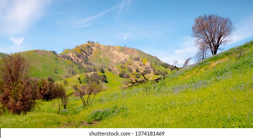 Malibu Creek State Park in California - travel photography