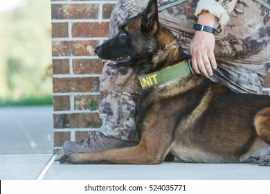 Malinois police dog lays next to a soldier or officers leg.