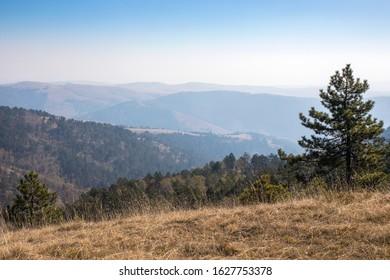 Maljen mountain on a sunny autumn day, Serbia