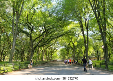 THE MALL, CENTRAL PARK, NEW YORK, USA-AUG, 16: People walking down through the Mall in the Park, August, 16, 2012