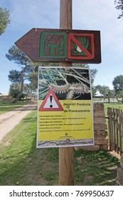 MALLORCA, BALEARIC ISLANDS, SPAIN - MARCH 6, 2017: Warning sign for dogs regarding processionary moth larvae on March 6, 2017 in Mallorca, Balearic islands, Spain.