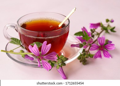 mallow herb and mallow flower tea in cup. - Shutterstock ID 1712655454