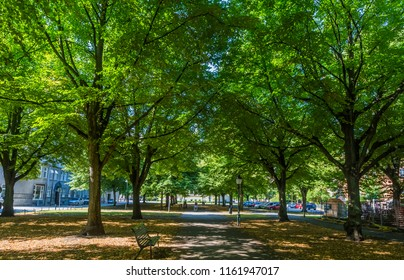 MALMO, SWEDEN - AUGUST 15, 2018: Summer morning in one of the parks of Malmo