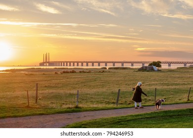 MALMO, SWEDEN - AUGUST 20: Oresund Bridge at dusk on August 20, 2013 in Malmo. The bridge is 7845 meters long and continues into the Drogden tunnel, which measures 4050 meters.