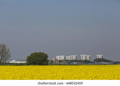 MALMO, SWEDEN - MAY 19, 2017:The agriculture landscape with rapeseed field outside Malmo city Sweden with shopping center and skyscrapers in the background