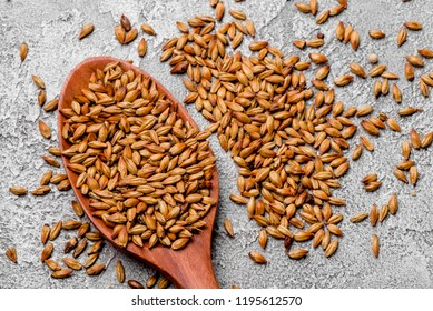 malted grains in a wooden spoon closeup. Mixed varieties of malted grain on a gray background. close-up. top view. flat lay. series of photos. space