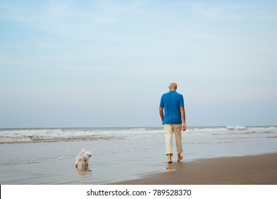 Maltese dog and male owner walking  at the beach,view from back side