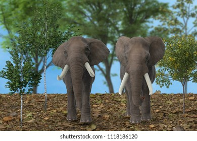 mammal animals; mammals; elephant; trunk; large; wildlife; ears; grey; african; africa