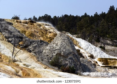 Mammoth hot springs located at Yellowstone national park, USA