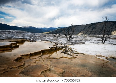 Mammoth Springs at Yellowstone National Park