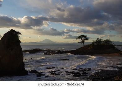 mamouse tateishi seashore fujiyama on sagamibay