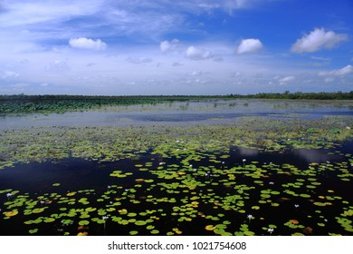 The Mamukala Wetland at South Alligator Region in Kakadu Nationl Park, Australia.