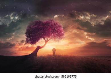 A man alone at sunset near a cherry tree