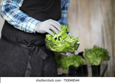 man in apron and gloves holds bowl of fresh green salad