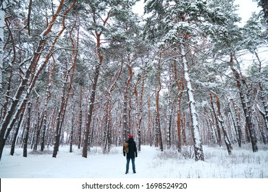 A man with a backpack walks in the winter forest. Snow-covered forest, beautiful Christmas trees. Beautiful winter landscape, cold nature. Stunning scenic view. Outdoor adventure, hiking journey