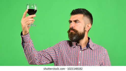 Man with beard examines glass of red wine isolated on green background. Winemaker with serious face holds wineglass. Winemaking and autumn concept. Sommelier tastes expensive beverage
