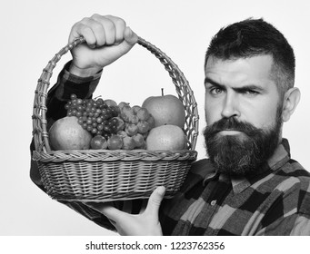 Man with beard holds basket with fruit isolated on white background. Farming and gardening concept. Guy holds homegrown harvest. Farmer with seductive face presents apples, grapes and cranberries