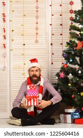 Man with beard holds present boxes. Santa Claus with flirty face on wooden wall and garlands background. Guy in hat and scarf sits by Christmas tree and presents. Celebration and New Year gift concept