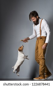 A man with a beard in a white shirt and yellow suspenders playing with his pet dog Jack Russell Terrier on a gray background