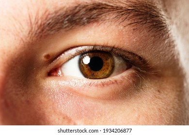 Man with beautiful brown eye color ai technology