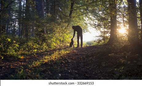 Man bending down to pet his black dog as they enjoy a beautiful nature in a glade in the woods backlit by the warm glow of the early morning sun.