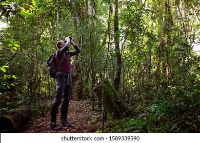 man with binoculars hiking in rainforest in misiones province in argentina near iguazu waterfalls, adventure travel concept