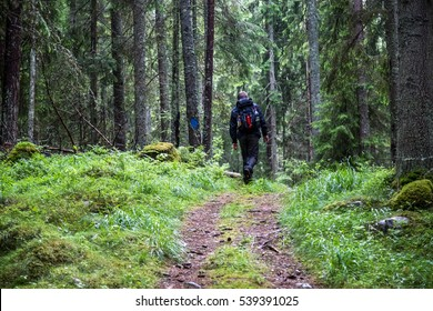 Man in black and backpack walks into the forest