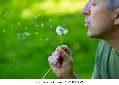 Man blowing dandelion over blured green grass, summer nature outdoor