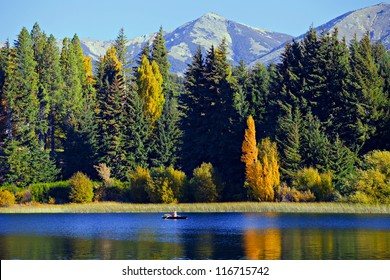 Man in a boat on the lake in the background of trees