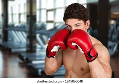 Man Boxer in sport jym