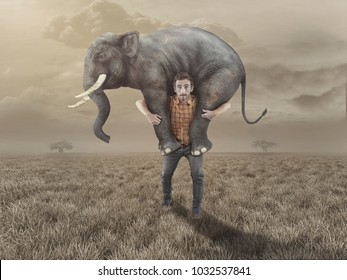 Man carries an elephant in the field.