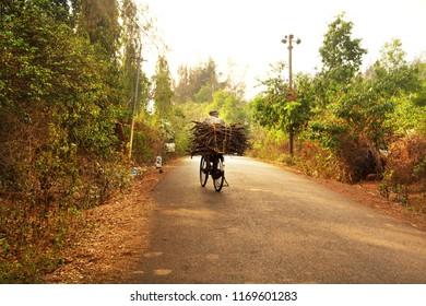 Man carring the brushwood. Gokarna, Karnataka, India