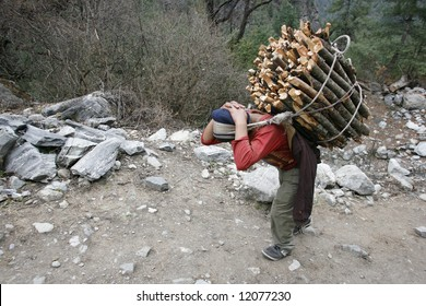 man carrying firewood, annapurna, nepal