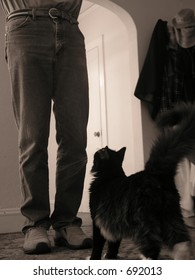 Man and Cat Address Each Other
