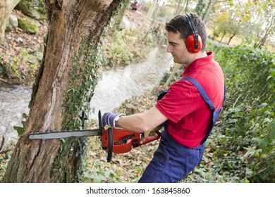 man with chainsaw, pruning a tree in day light
