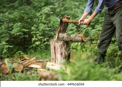 a man chopping wood in the forest