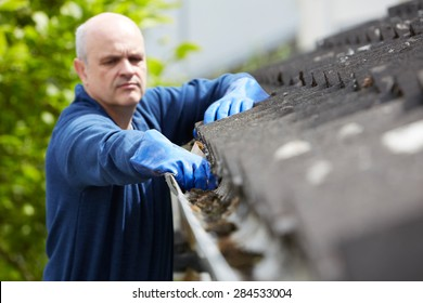 Man Clearing Leaves From Guttering Of House