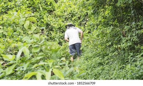 a man climb the hill in jungle, thailand