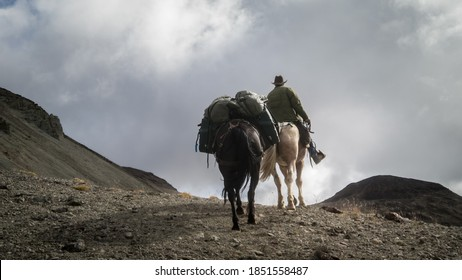 Man with Cowboy hat leading the way with his horse and pack horse.