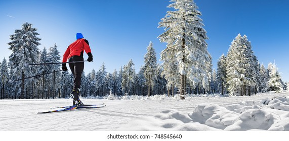A man cross-country skiing on the langlauf trail in wintry forest