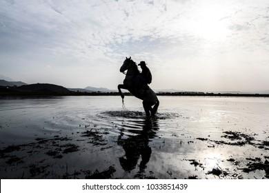 Man with Curvet Horse